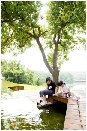 荳芽.蝴蝶.二泉湖畔咖啡民宿
